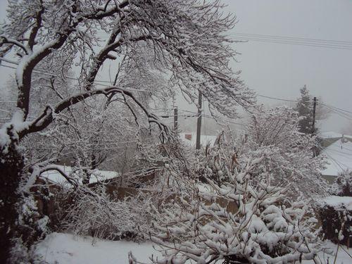 February 2010 060
